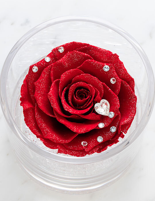 TimelessRose Bright Red クリアベース 1輪