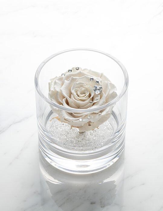 TimelessRose (Platinum White) クリアベース 1輪