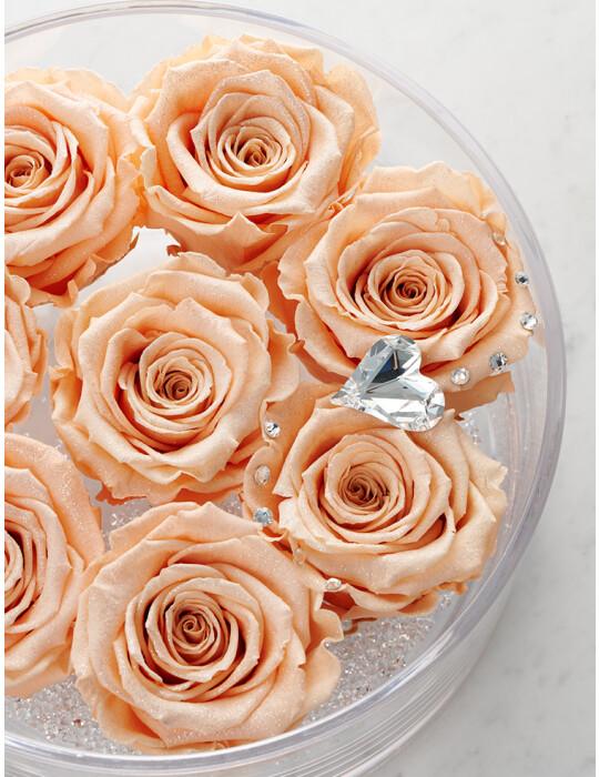 TimelessRose (Peach Pink) クリアベース 8輪