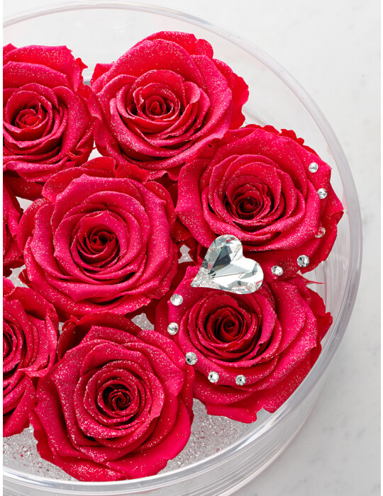 TimelessRose (Hot Pink) クリアベース 8輪