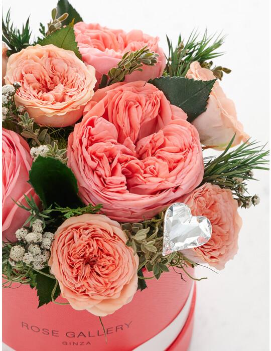 Preserved Flower Arrangement (Candy Pink)