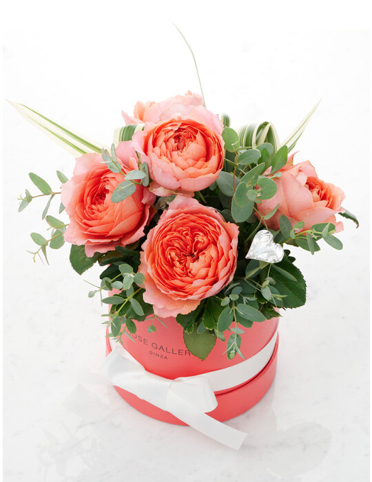FreshRose(Coral Pink) cylinder BOX set