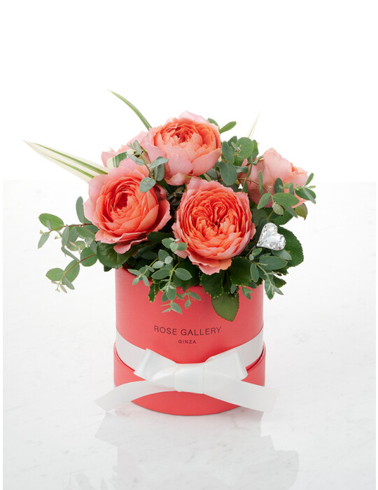 FreshRose(Coral Pink) cylinder BOX set